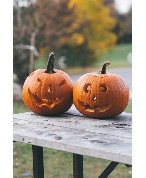 Halloween (10-14 años)